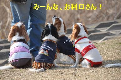 20090211_川原_06