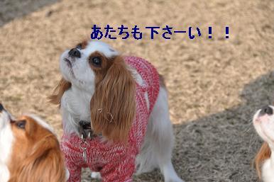 20090211_川原_07