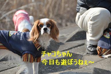 20090211_川原_04