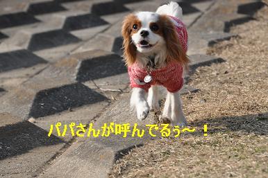 20090211_川原_09