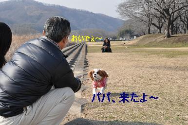 20090211_川原_10