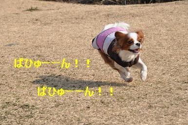 20090211_川原_12