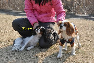 20090211_川原_16
