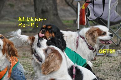 20090215_川原_01