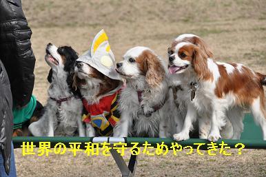 20090215_川原_06