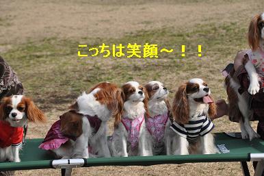 20090215_川原_07_01