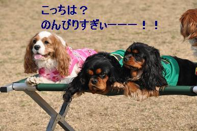 20090215_川原_08_02