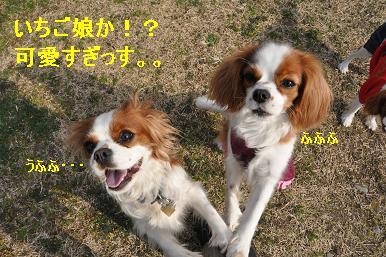 20090215_川原_09_03