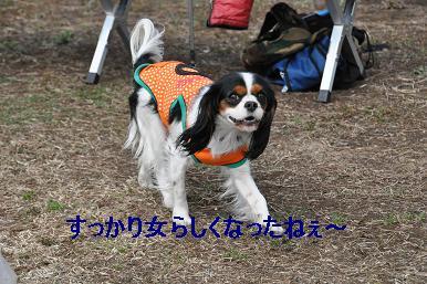 20090215_川原_13
