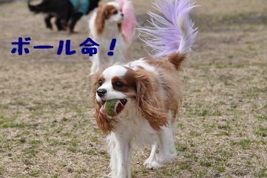 20090301_川原01