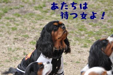 20090301_川原02
