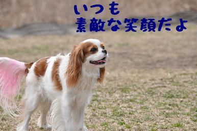 20090301_川原04