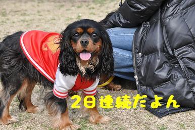 20090301_川原06