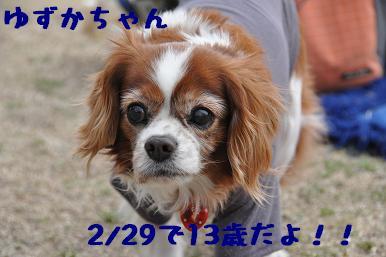 20090301_川原15