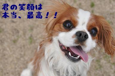 20090301_川原16
