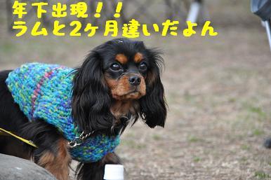 20090301_川原18