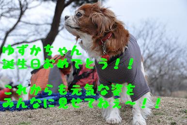 20090301_川原27