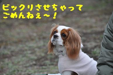 20090301_川原20