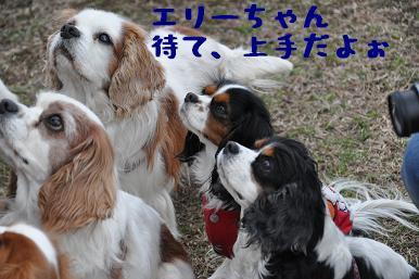 20090301_川原21