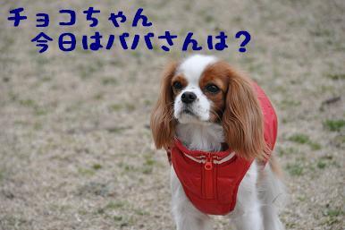 20090301_川原23