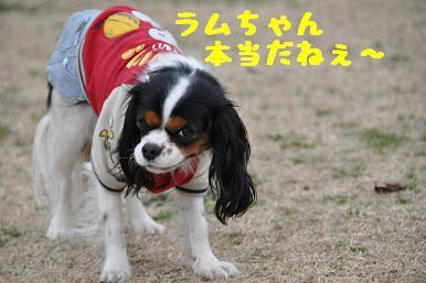 20090301_川原25