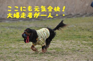 20090307_川原_02