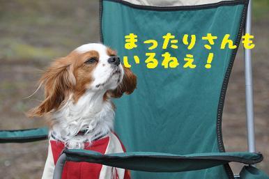 20090307_川原_15