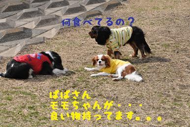 20090307_川原_12