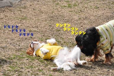 20090307_川原_14