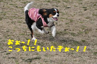 20090307_川原_04