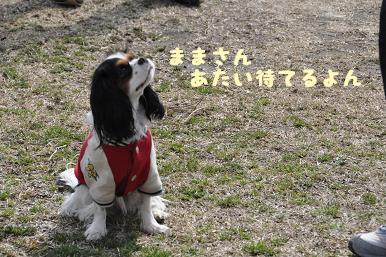 20090307_川原_20