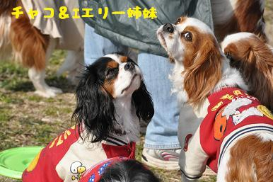 20090307_川原_26