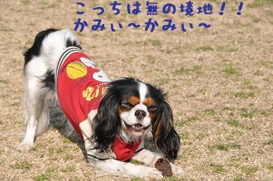 20090307_川原_09