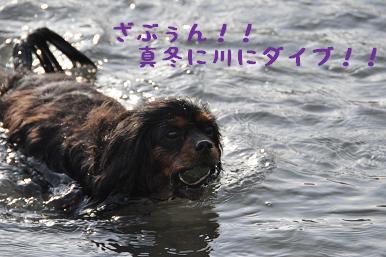 20090307_川原_29