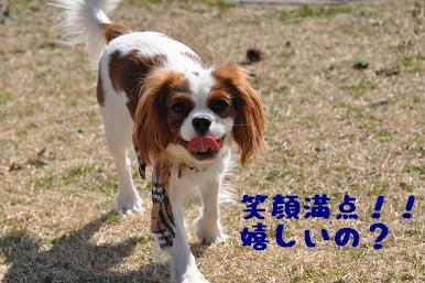 20090315_川原_06