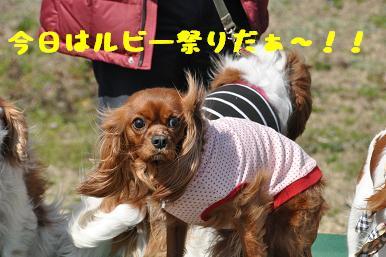 20090315_川原_03