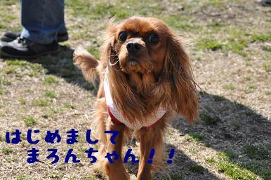 20090315_川原_04