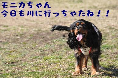 20090315_川原_12
