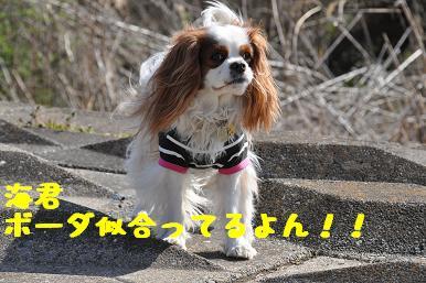 20090315_川原_13