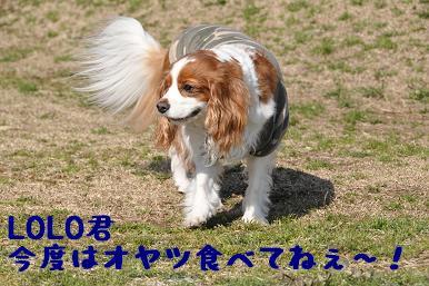 20090315_川原_15