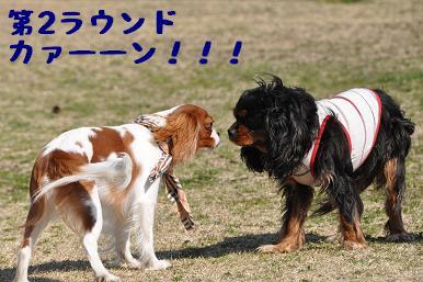 20090315_川原_25