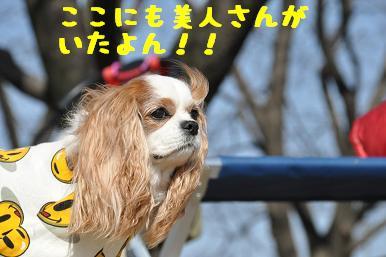 20090315_川原_18