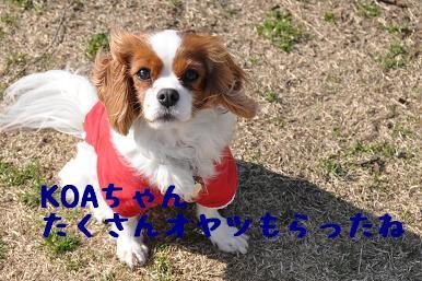 20090315_川原_19