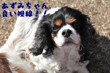 20090315_川原_20