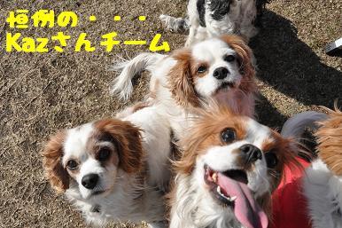 20090315_川原_21