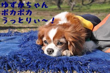 20090315_川原_23