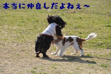 20090315_川原_05