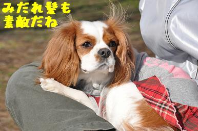 20090315_川原_24