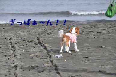 20090320_江ノ島_04