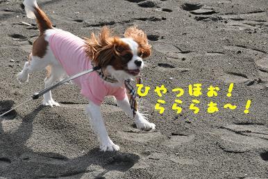 20090320_江ノ島_07